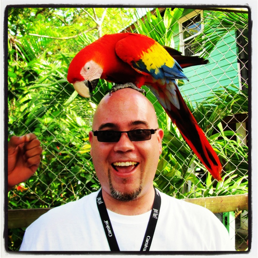 03-23-12 -- Speaking of once-in-a-lifetime moments, when will a macaw EVER sit on top of my head again?
