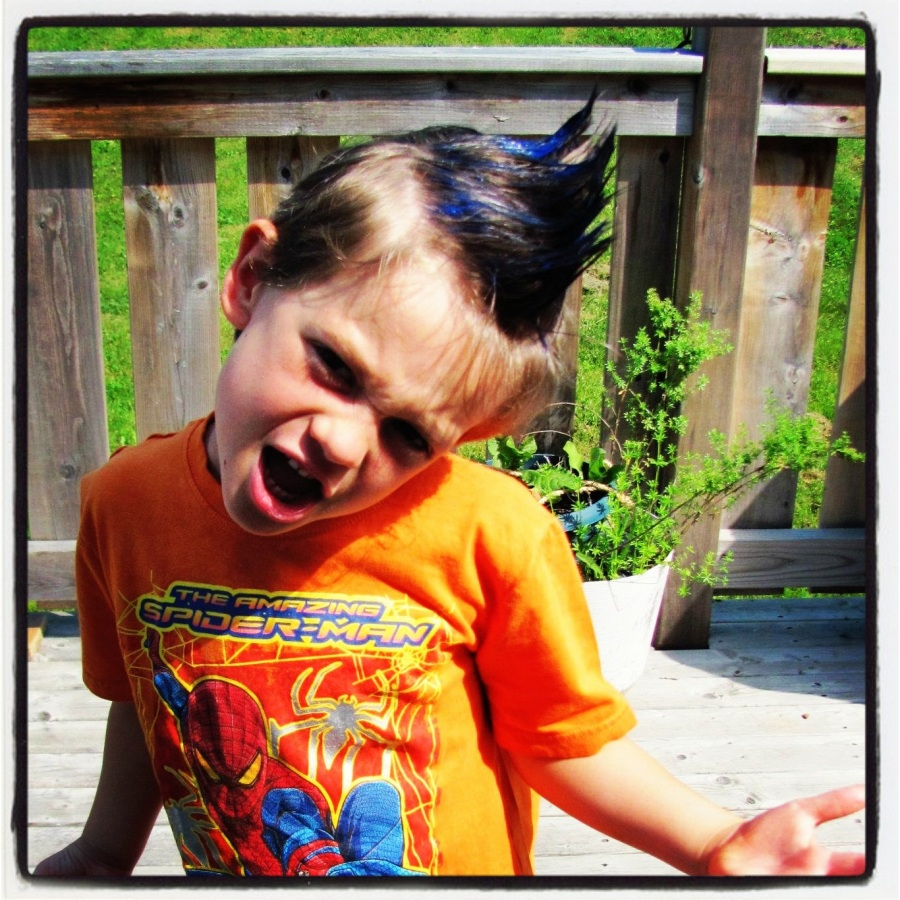 07-14-12 -- Ankle Biter was quite proud of his blue faux-hawk.