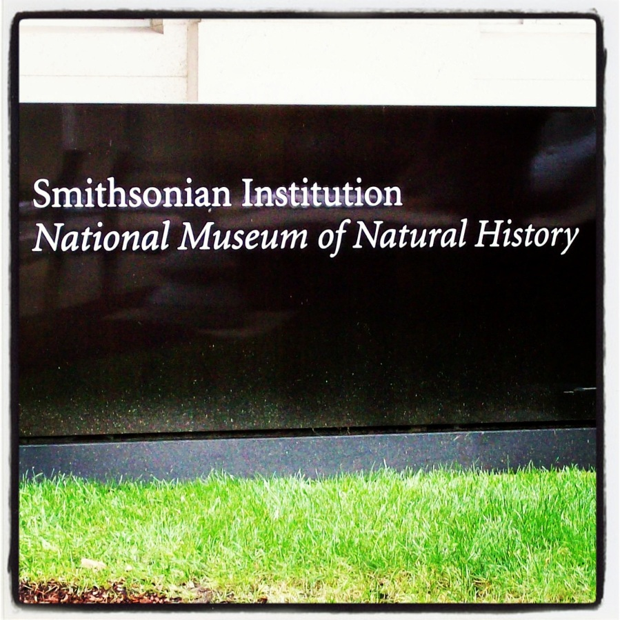 Smithsonian: National Museum of Natural History