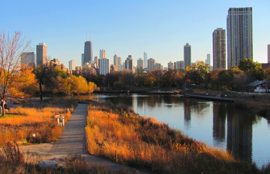 The view ofdowntown Chicago from the Lincoln Park Zoo