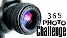 365 Photo Challenge