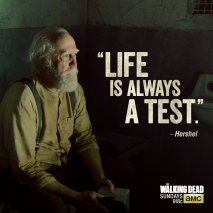 Life is always a test