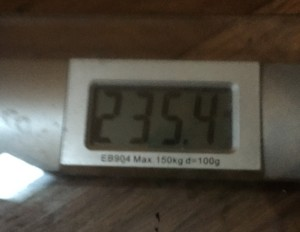 My Weight - 02-25-16 - 235.4lbs